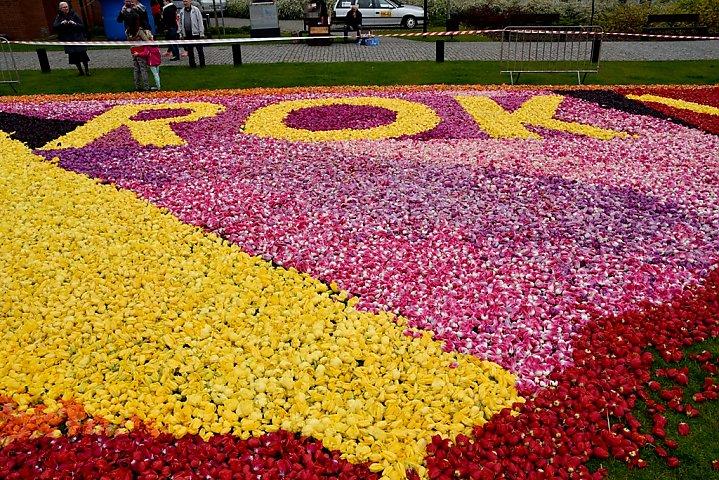 Dywany Kwiatowe Na Wyspie Młyńskiej Zdjęcia Tygodnik